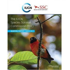 The Red Siskin featured on the cover of SSC Report