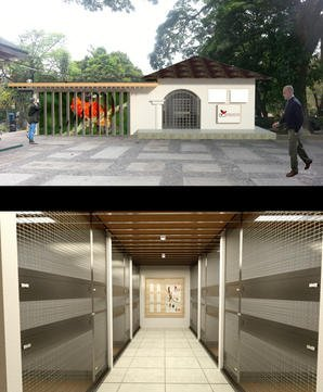 Building an Integrated Conservation and Education Center for Red Siskin conservation in Caracas