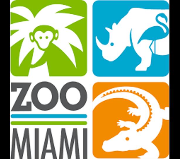 Siskins from SCBI to Zoo Miami