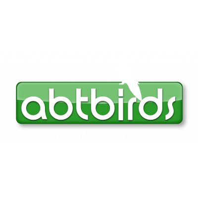 ABT Birds